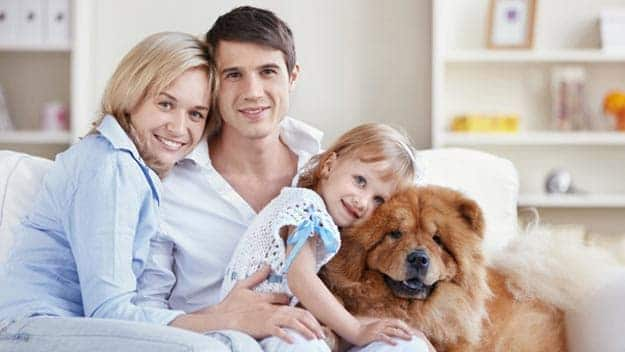 Wills & Trusts dog-young-family Direct Wills Tulse Hill